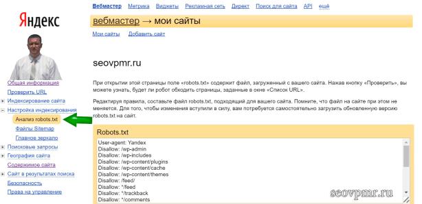 Анализ robots.txt в панели вебмастер