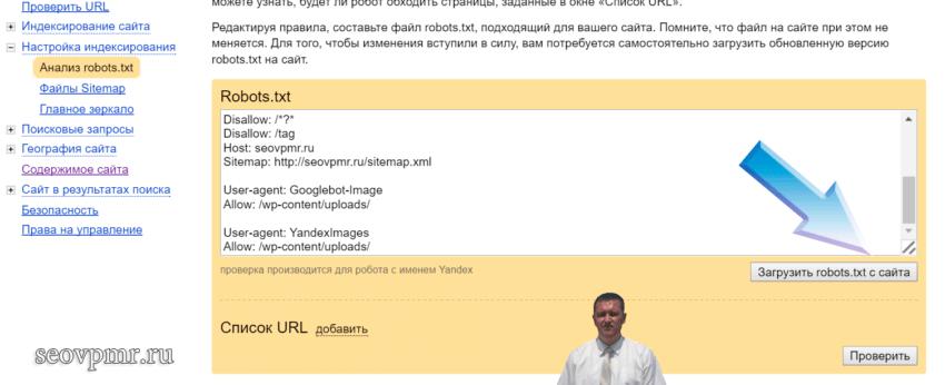 Проверка файла роботс для wordpress