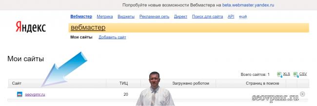 Панель вебмастер яндекс